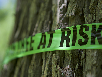 EAB Is Here. Now What?