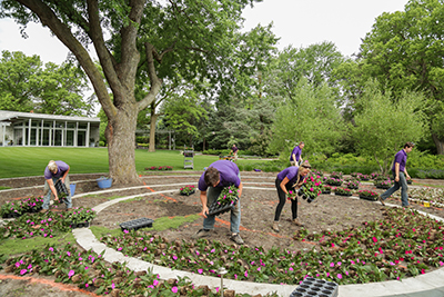 Planting Annuals in the Circle Garden // 2017