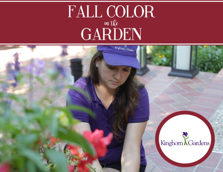 Fall, Fall Season, Fall Color, Fall 2017